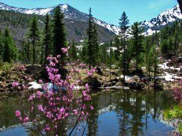 Путешествие по живописным просторам горы Борус