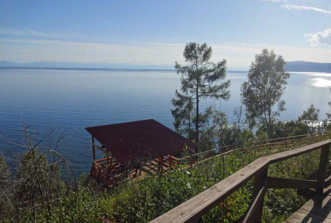 Байкальский музей – обитель чудес животного мира