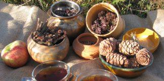 Целебные растения Сибири – здоровье без таблеток