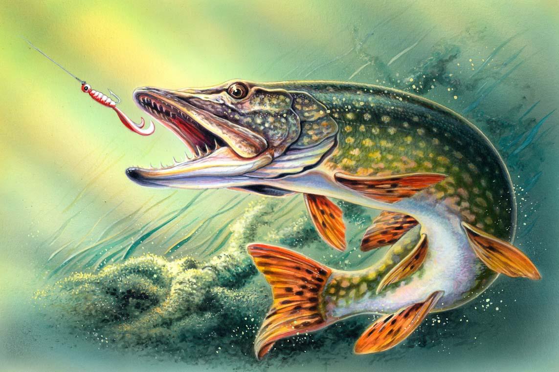 картинки рыболовные