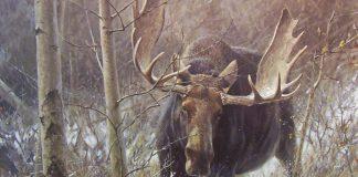 Охота на лося облавным способом