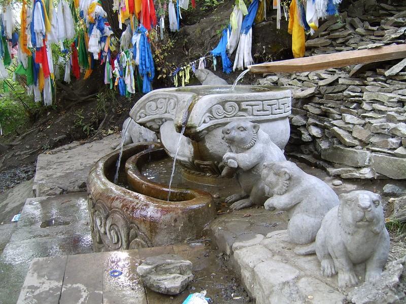 Сарыг кундус – прародитель всех бобров
