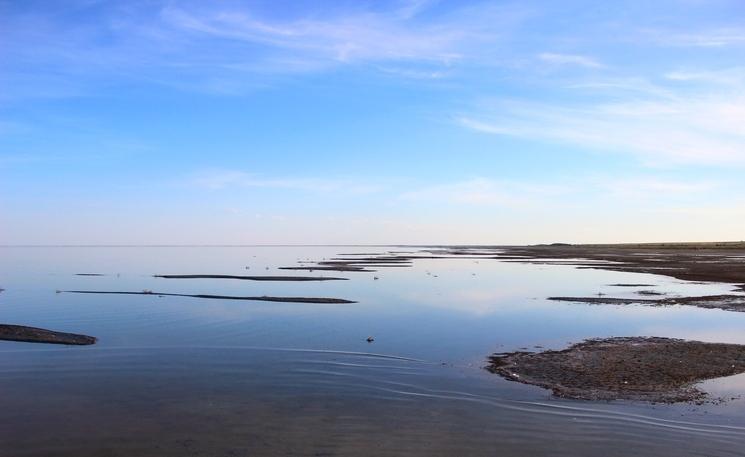 Целебное Кулундинское озеро