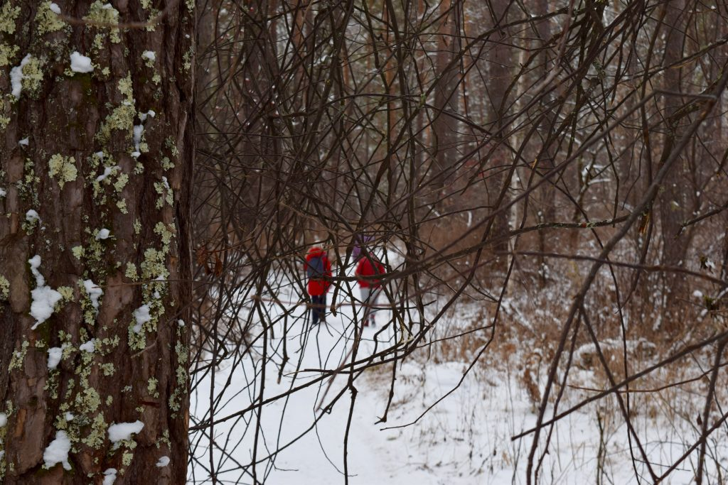 Зимняя прогулка к Камышлинскому водопаду
